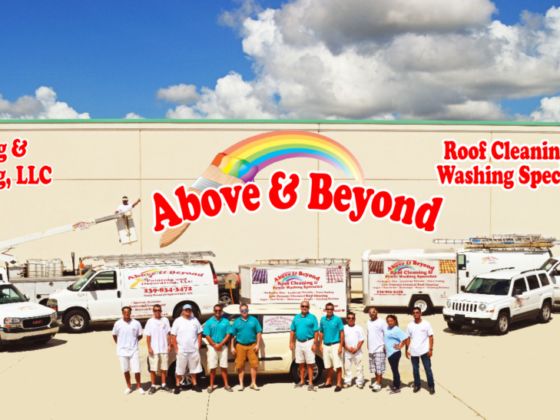 Above And Beyond Painting Paver Sealing And Roof Cleaning